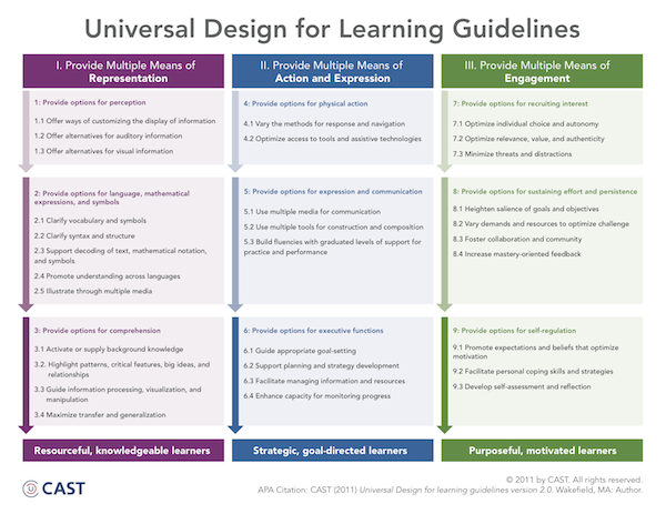 UDL Guidelines graphic organizer